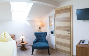 Single room without balcony named Karnische Alpen_2
